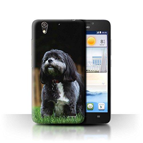 Hülle Für Huawei Ascend G630 H&/Eckzahn Rassen Shih Tzu Design Transparent Ultra Dünn Klar Hart Schutz Handyhülle Case