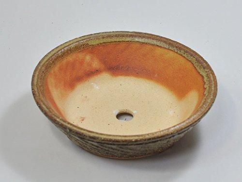 盆栽妙 信楽焼 盆栽鉢 6号 そり型 幅18cm×奥行き18cm×高さ5cm 陶器製 植え替えキット付き 30146B007