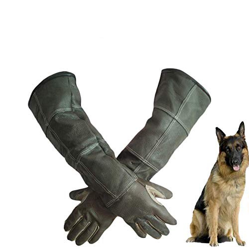 Animal Handling Gloves Anti-Scratch Protection Gloves