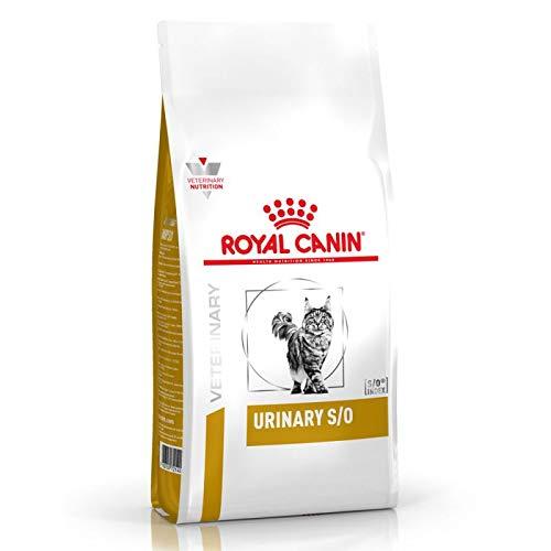 Royal Canin Urinary SO 33 Dry Cat Food