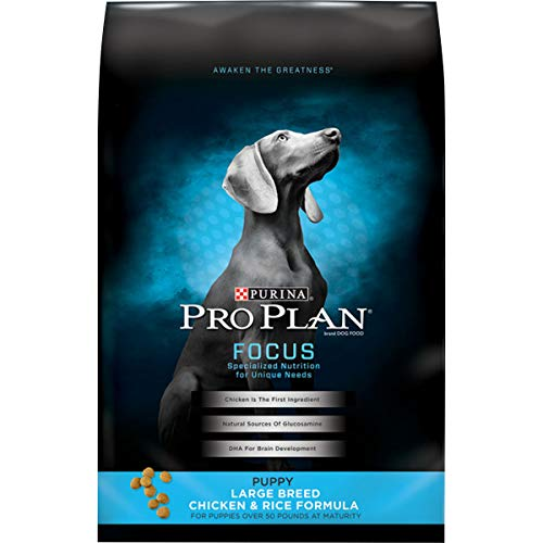 Purina Pro Plan Large Breed Dry Puppy Food, FOCUS...
