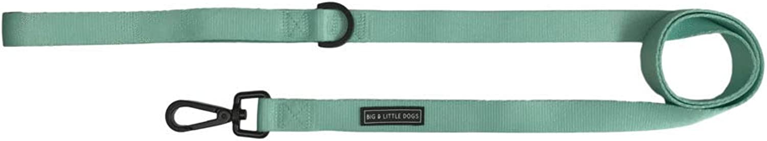 Big & Little Dogs Dog Leash Classic Teal with Comfort Neoprene Handle (2.5cm Wide)