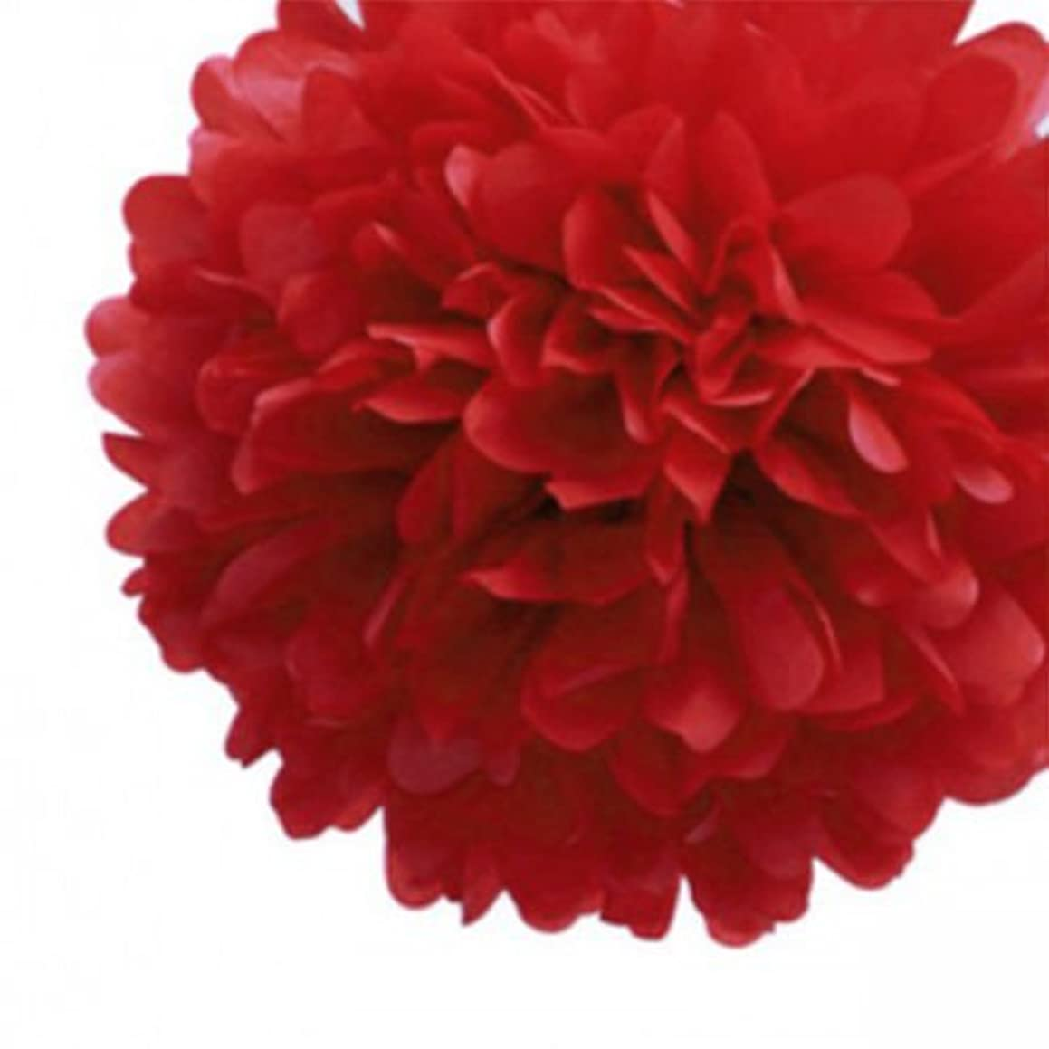 LingsFire 10 Pack 10 Inch Tissue Paper Flower Ball Pom-poms For Party/Wedding / Home/Outdoor Decoration (Red)