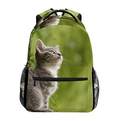 Ahomy Rucksack mit Katzen-Motiv, Schulranzen für Mädchen, Jungen, Frauen, ideal für Reisen