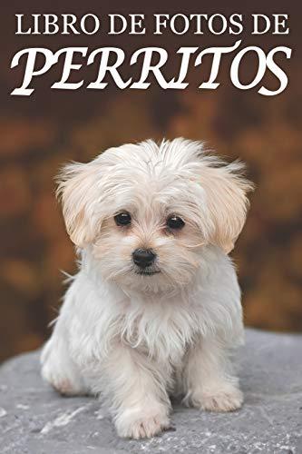 Libro de Fotos de Perritos: Ayuda para Personas Mayores con Demencia o Alzheimer (Libros que Facilitan la Lectura a Personas con Demencia)