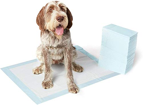 AmazonBasics Dog and Puppy Potty Training Pads, X-Large (28 x 34 Inches) - Pack of 40