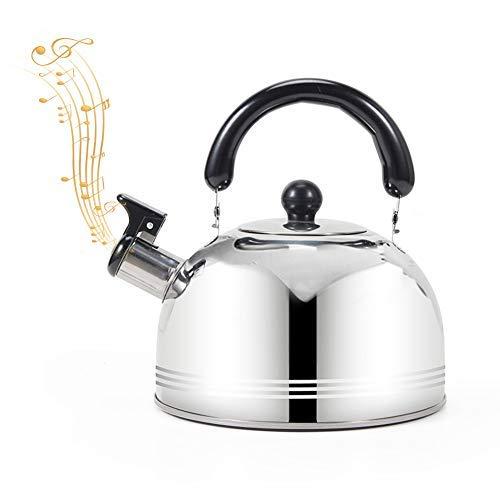 Bollitore da tè a fischietto, 2 l/3 l/4 l, in acciaio inox con manico ergonomico, adatto per tutti i tipi di piano cottura/stufa (2 l).