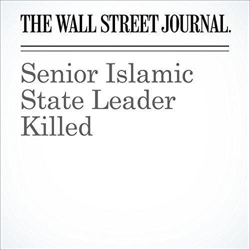 Senior Islamic State Leader Killed cover art