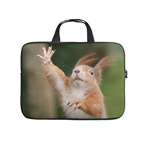 Funny Squirrel Laptop Computer And Tablet Carrying Case Bag Waterproof Portable Laptop Sleeve For Business&Travel white 12 zoll