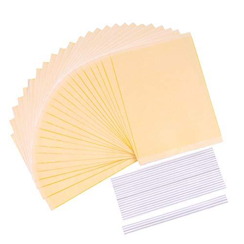 sellebestgood Paquete de 24 trampas Adhesivas Dobles de 6 x 8 Pulgadas para Insectos de Plantas voladoras (se Incluyen Corbatas)