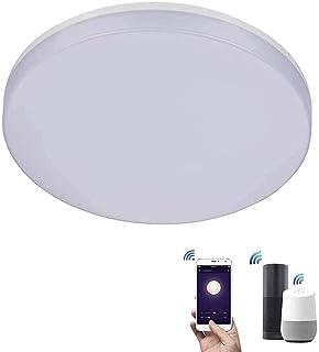 ZEYUN Lámpara de techo LED de 24 W, WiFi, regulable, Smart LED, compatible con Alexa y Google, control por aplicación y vo...