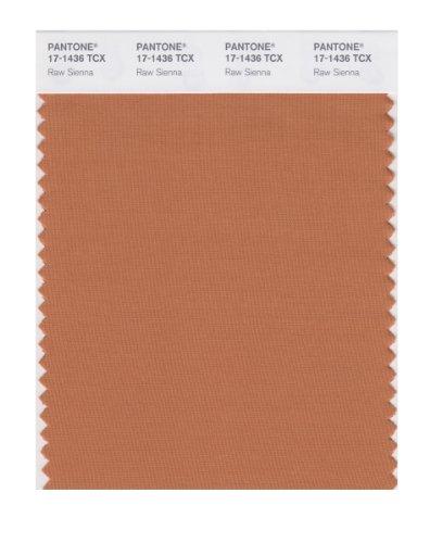 PANTONE Smart 17–1436X Farbmuster-Karte, Raw Sienna