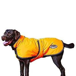 Weatherbeeta Reflective Parka with Belly Wrap Dog Blanket – 18 – Orange