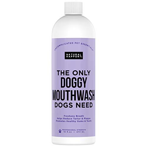 Enjuague bucal para Perros Rapport Natural - El único Enjuague bucal para Perros Que los Perros Necesitan - Aditivo de Agua para el Cuidado Dental (16 FL oz.)