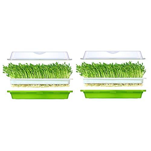 Huntfgold 2 Stück Seed Sprouter Tray Keimschale für Sprossen BPA-freies Samen Keimung Tablett extra kleines Loch kein Papier erforderlich mit Deckel für Garten Home Office