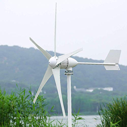 DSDD Generador de energía de turbina de Viento Horizontal de 1000 W, 24 V / 48 V, 3/5 Cuchillas, Velocidad de Inicio, 2 m/s, Apto para farolas
