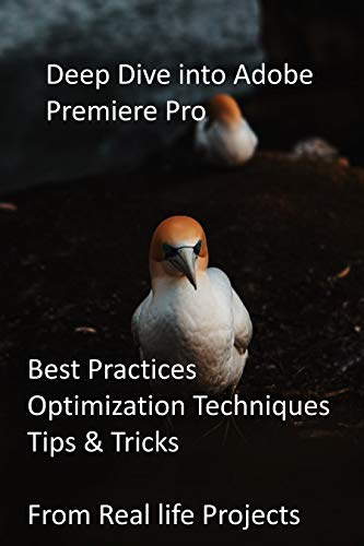 Deep Dive into Adobe Premiere Pro: Best Practices, Optimization Techniques, Tips & Tricks from Real life Projects (English Edition)