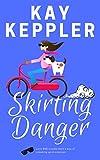 Skirting Danger (Chasing the CIA)