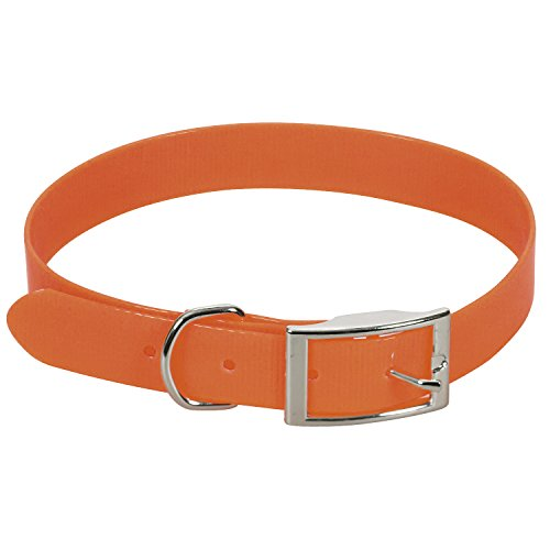 CHAPUIS SELLERIE SLA374 Collar Fluorescente de Perro - Correa de PVC Naranja - Ancho 25 mm, Largo 55 cm, Talla L