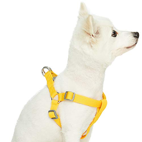 UMI. Essential Classic - Arnés para Perros M, Contorno del Pecho 51-66 cm, arneses Ajustables para Perros (Amarillo)