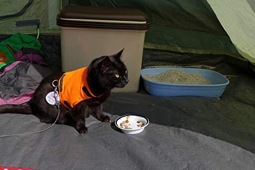 Mynwood Cat Jacket /Harnais haute visibilité pour chat adulte Orange