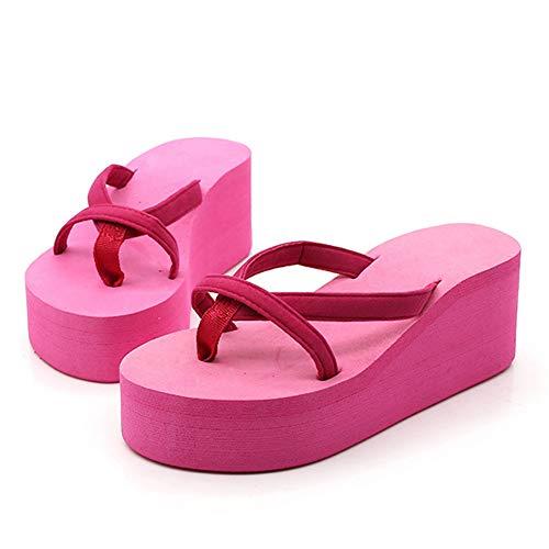 Plataforma para Mujer Sandalias Sencilla y cómoda Señora Verano Clásicos Zapatillas Solide Chanclas de Playa Gruesa
