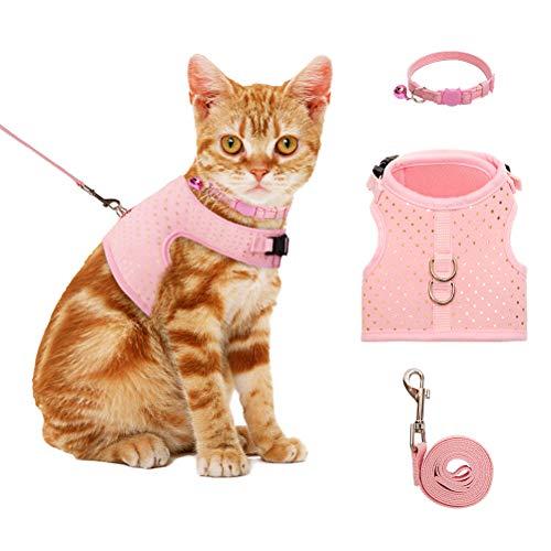 BINGPET Katzengeschirr und Leine zum Spazierengehen, ausbruchsicher, verstellbares Haustiergeschirr für kleine, mittelgroße und große Katzen mit Halsband