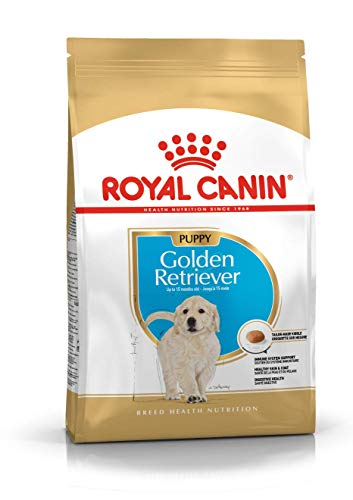 Royal Canin C-08997 S.H Golden Retriever Junior - 12 Kg ✅