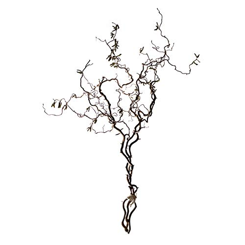3 echte Korkenzieheräste im Bund (ca. 90-110 cm/Ast): Naturdeko für Bodenvasen I Deko Ast I Bodendeko Wohnzimmer I Äste und Zweige deko I Holz Äste auch für Nagetiere & Vögel
