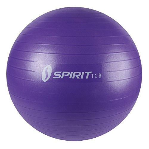 Spirit Gymnastiekbal Ø 65 Zitbal Fitnessbal Yogaball bureaustoel bal pomp