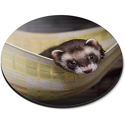 Ronde muismat - Baby Ferret Weasle hangmat Office Gift
