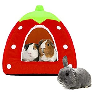 Spring Fever Hamster Guinea Pig Rabbit Dog Cat Chinchilla Hedgehog Bird Small Animal Pet Bed House Hideout Cage Accessorie B Red S