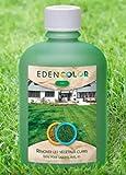 EdenColor   Pintura ecológica para césped y césped natural o sintético   Enverdecimiento para colorear espacios verdes   Pintura verde claro u oscuro para plantas marrones, palmeras, tuya, boj