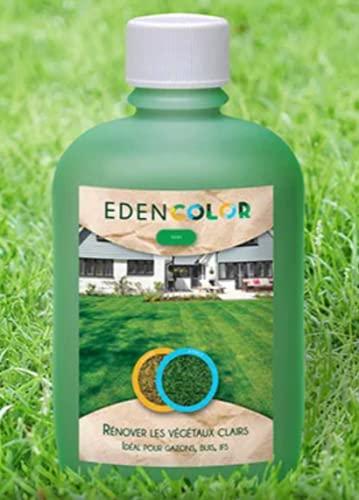 EdenColor | Pintura ecológica para césped y césped natural o sintético | Enverdecimiento para colorear espacios verdes | Pintura verde claro u oscuro para plantas marrones, palmeras, tuya, boj