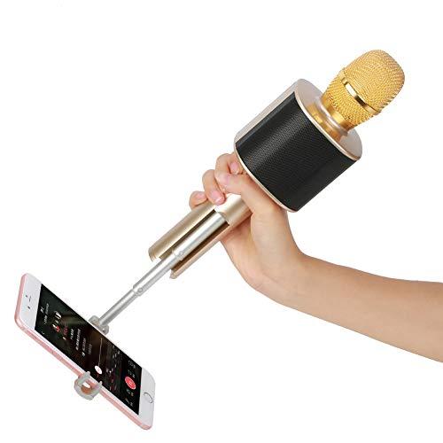 bocina karaoke con microfono inalámbrico fabricante Rziioo