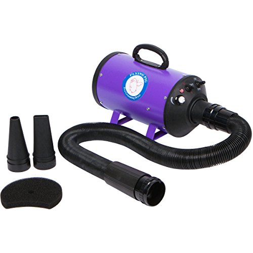 Flying Pig High Velocity Pet Grooming Dryer w/ Heater (model: Flying One, Purple)
