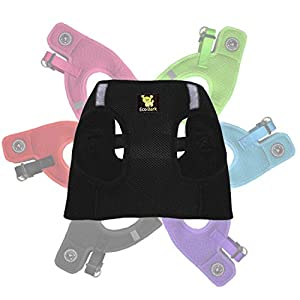EcoBark Step in Dog Harness Reflective Soft Ultra Padded Mesh Dog Harnesses for XXS, XS, Small, and Medium Dogs Eco-Friendly Comfort Secure Halter No Pull Adjustable Pet Vest