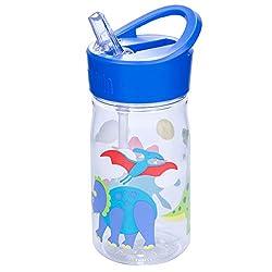 5. Wildkin Olive Kids Dinosaur Land Water Bottle, 16oz