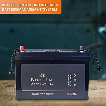 100 Ah LiFePO4 Akku für Belly Boot Elektro Motor kaufen