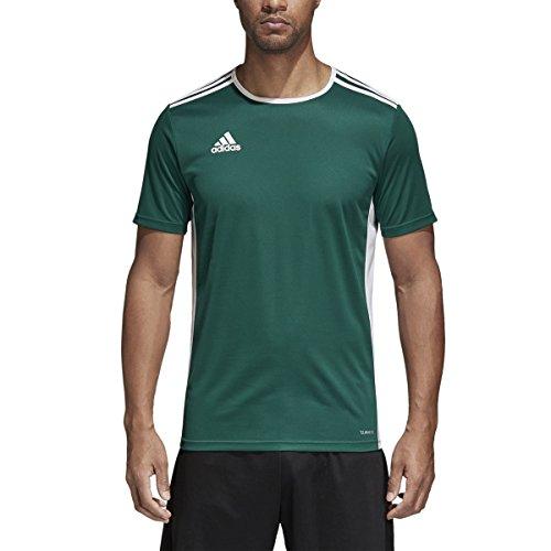 adidas Entrada 18 Camiseta de Manga Corta para Hombre, Camiseta Entrada 18, Hombre, Color Color Verde y Blanco, tamaño Extra-Large