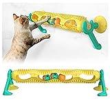 LGQ Juguetes de Bolas para Gatos para Gatos de Interior, Pista de Juguetes para Gatos con Bola, con Gatos de Interior de Menta, Divertidos Rompecabezas para Mascotas, Suministros mentales