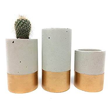 Concrete Succulent Planters/Air Plant Holders. Urba planters (set of 3) Gold. Cement Succulent pots. Modern Planter set