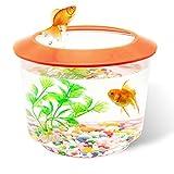 Pet Living - Tanque de peces pequeños y acuarios para peces y peces pequeños, juego completo para niños, pecera para peces de colores con grava ornamental (naranja)
