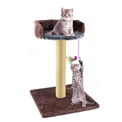 Zubita Kratzsäule und Spielzeug-Ball für kleine Katzen - Kratzbaum mit Bodenkratzplatte, Kratzsäule, Plüsch Spielzeug-Ball und Kuschel Lounge-Plat