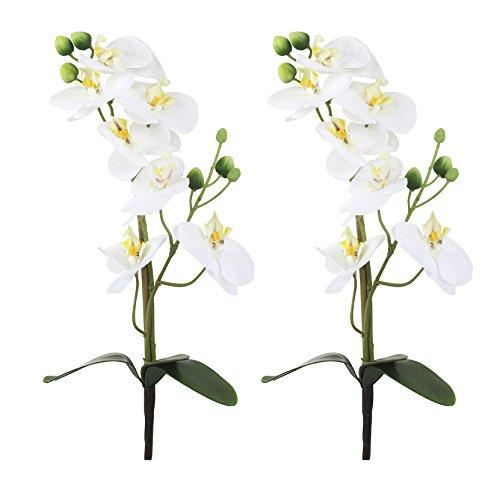 Decoline Orchideen-Zweig künstlich 2 Stück (A - mit Blättern 38cm)