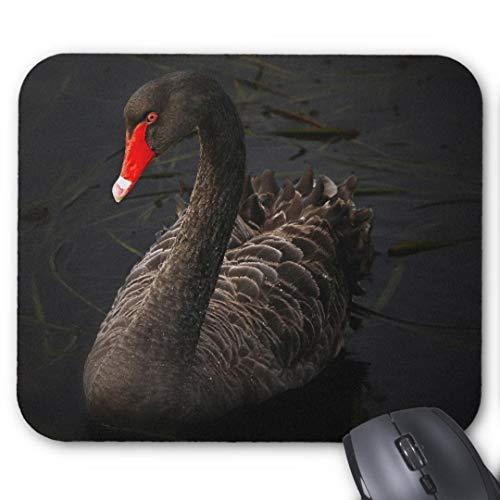 Mousepad Anti-Rutsch-Gummi Gaming Mauspad Rechteck Mauspad für Computer Laptop schöne Schwarze Schwan Schwimmen auf einem Fluss Mauspad