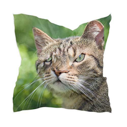 XiangHeFu dames hoofddeksel zakdoek dunne chiffon transparante zijdesjaal kleine kattenportret
