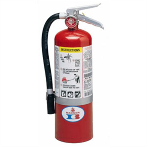 Badger 22435B Standard 5 Pound ABC Multipurpose Dry Chemical Stored Pressure Fire Extinguisher w/ Wall Hook
