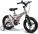 Triciclo Bebé Trolley Trike Bicicleta for niños conveniente, 14/16 pulgadas Cochecito de bebé 3-6 años de edad Montaña Bicicleta Bicicleta Bicicleta Bicicleta Bicicleta cómoda (Color: Oro, Tamaño: 14