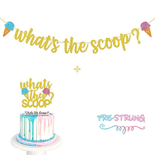 What's The Scoop Glitter Banner Sign Pre-Strung for Ice Cream Theme Gender Reveal Party Decorations
